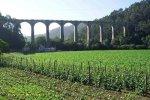 Viaducto-de-Canero-(Trevias)