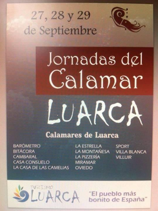 calamar13