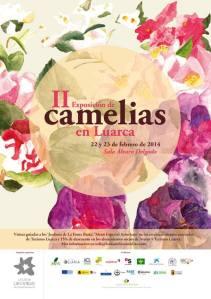 camelias2